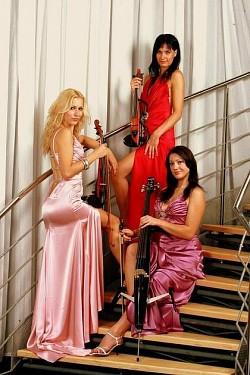 Profilový obrázek STRING LADIES