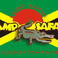 Profilový obrázek Swamp Safari Sound System