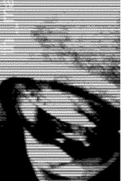 Profilový obrázek the_maaaigs