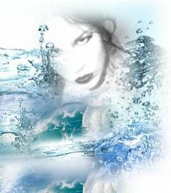 Profilový obrázek The Project