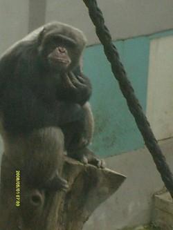 Profilový obrázek TRepI