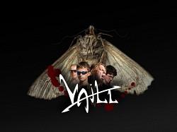 Profilový obrázek Vaill
