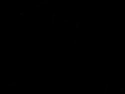 Profilový obrázek VímeSvý