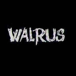Profilový obrázek Walrus