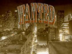Profilový obrázek Wanted Crew