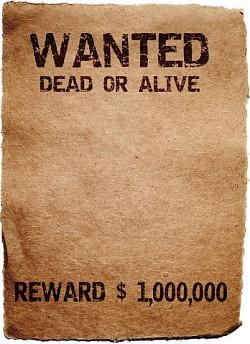 Profilový obrázek Wanted X