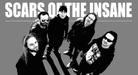 Promo obrázek Scars of the Insane