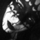Profilový obrázek adoratha