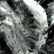 Profilový obrázek bzuzaj