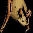 Profilový obrázek Kalonevbalone
