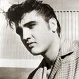 Profilový obrázek Presley