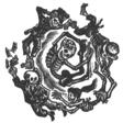 Profilový obrázek papuanec