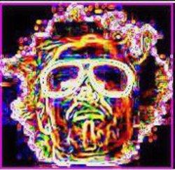 Profilový obrázek Perry Perne
