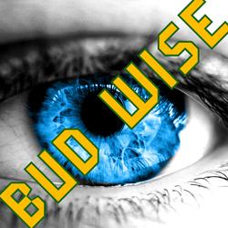 Profilový obrázek budwise