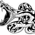 Profilový obrázek snakeman