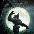 Profilový obrázek werewolfmatt