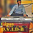 Profilový obrázek Gipsy  D.V.I.D-B