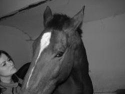 Profilový obrázek Lída Yasira