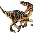 Profilový obrázek morbidius