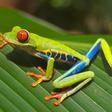 Profilový obrázek danielfrog