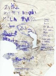 Profilový obrázek Kurva od Vedle je nejlepší kapela na světě
