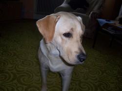 Profilový obrázek ČENDA1807