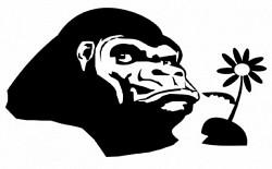 Profilový obrázek Club Gorilla
