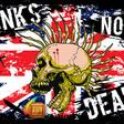 Profilový obrázek Punk'never'dies