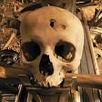 Profilový obrázek FalloutNo1