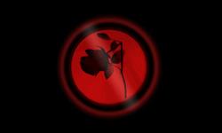Profilový obrázek Red Blazer