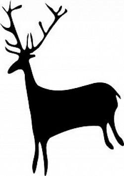 Profilový obrázek jeleniste