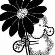 Profilový obrázek jita007