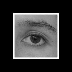 Profilový obrázek leonaalma