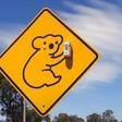 Profilový obrázek MC Koala