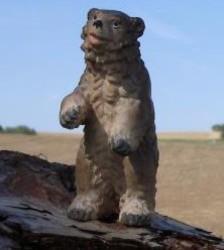 Profilový obrázek Medwa