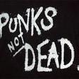 Profilový obrázek punkpepik