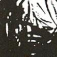 Profilový obrázek ane