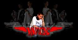 Profilový obrázek Wix Fan