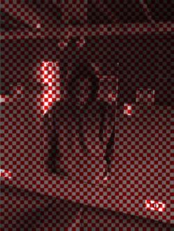 Profilový obrázek xPetrx