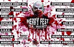 Profilový obrázek Merry Fest vol.4