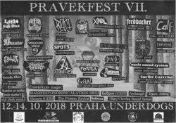Profilový obrázek Pravěkfest VII.