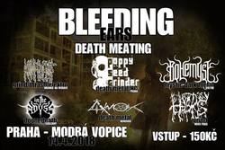 Profilový obrázek Bleeding Ears Death Meating