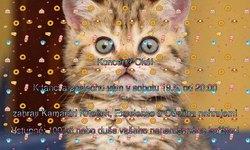 Profilový obrázek Od zítra nehrajem + Kamarád Krteček + Excelence