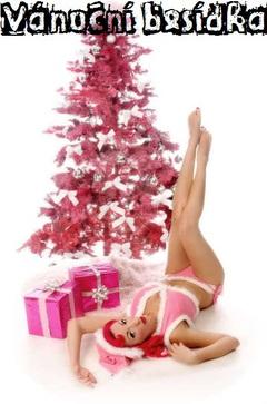 Profilový obrázek Vánoční Besídka vol. 6 + (křest nového EP Kombajn (boys)