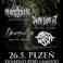 Profilový obrázek Amnesia Tour - Plzeň