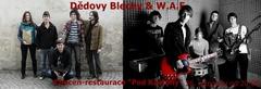 Profilový obrázek Dědovy Blechy & W.A.F.