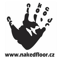 Profilový obrázek Naked Floor - Benefiční koncert 2011