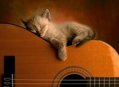 Profilový obrázek Akustický koncert In the Mood