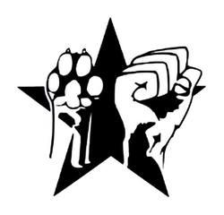 Profilový obrázek Solidarity party II. !benefit!