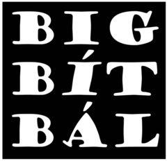 Profilový obrázek BIG BÍT BÁL 2011